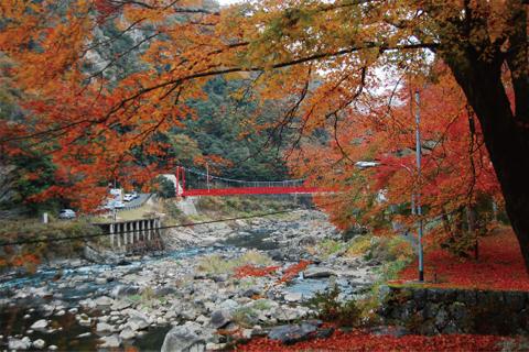 武庫川渓谷河畔