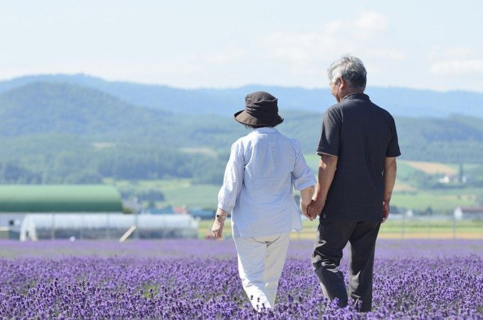 花畑を歩く夫婦