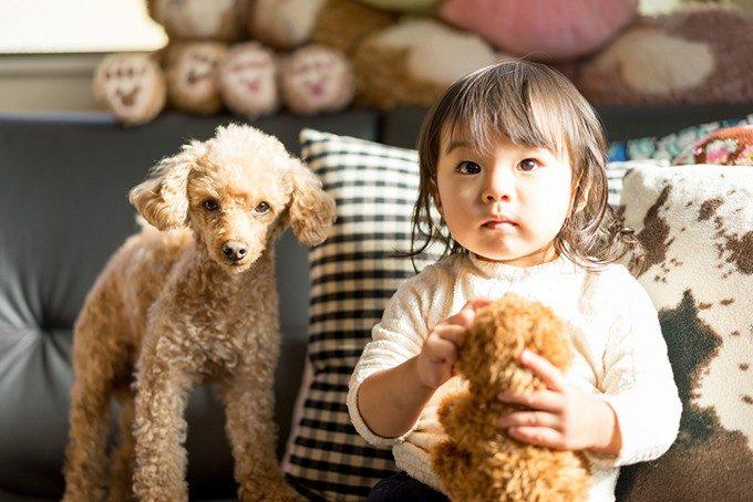 子犬と子供