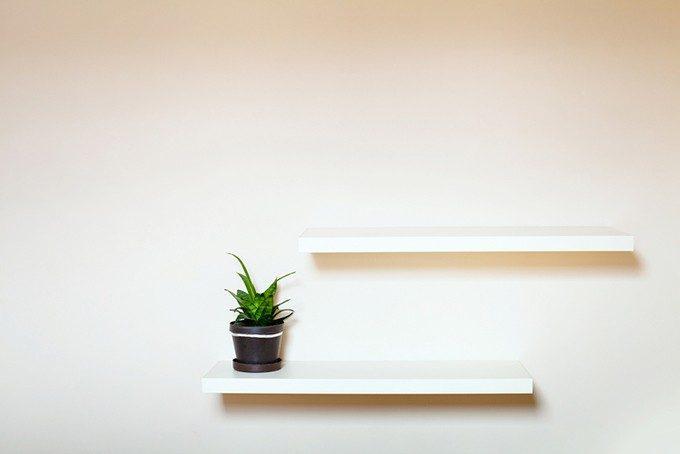 ウォールラックと植物