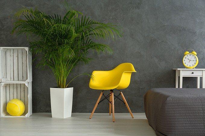 黄色いイスと植物