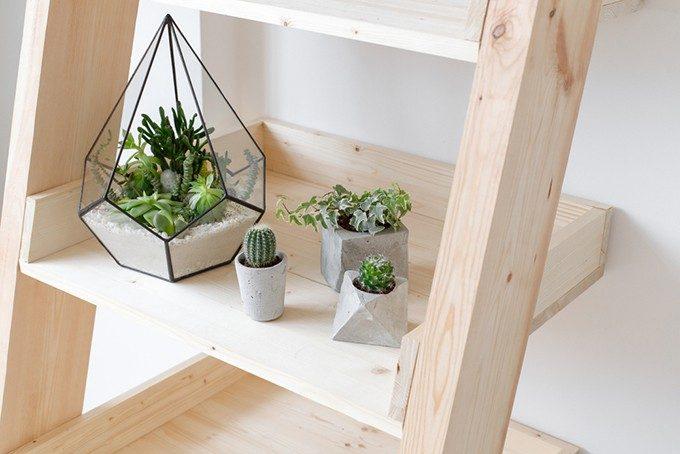 台に置かれた小さい植物