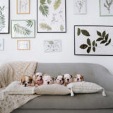 sofa01